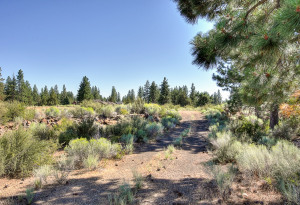 19378 Seaton Loop, BEND