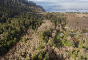 Shingle Mill LN, ARCH CAPE, OR