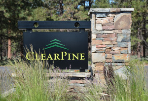 Flat Build Ready Lot in ClearPine!