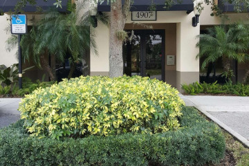 Home for Rent at 4907 Midtown Lane #1203, Palm Beach Gardens FL 33418