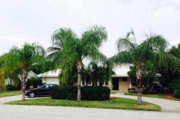 Home for Rent at 885 NE 6th Street, Boca Raton FL 33432