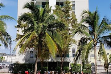 Home for Rent at 1035 West Ave #407, Miami Beach FL 33139