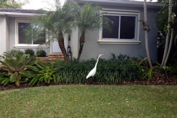 Home for Sale at 3527 Vista Ct, Miami FL 33133