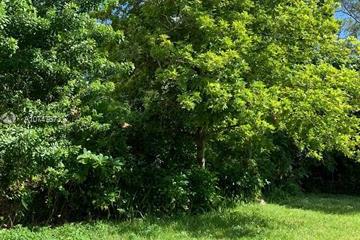 Home for Sale at 3642 William, Miami FL 33133
