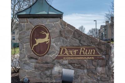 509 Deer Run