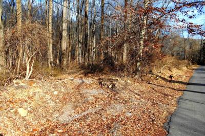 Lot 27-1 Dogwood Ln
