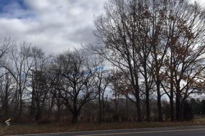 110 N Route 73