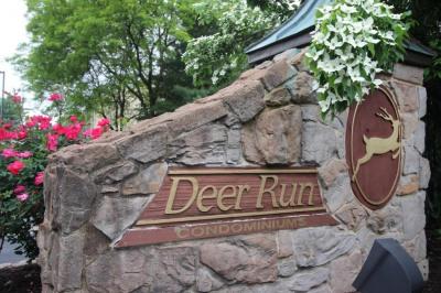 205 Deer Run