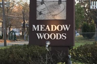423 Meadow Woods #902