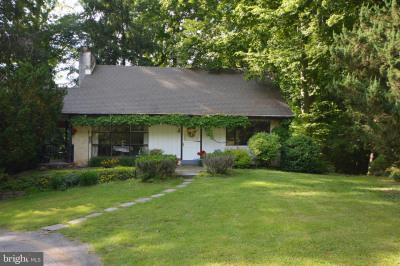 554 Rosemary Circle