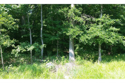 454 Woods Rd