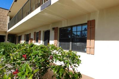 4459 Oak Terrace Drive #4459