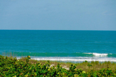 3100 N A1a Highway #302