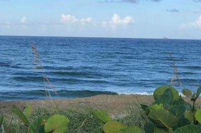 4200 N Ocean Drive #2-1402