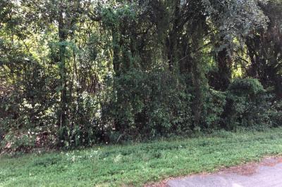 9120 Mockingbird Trail