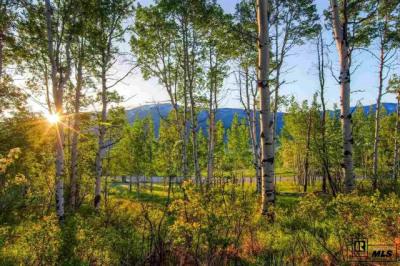 31625 Aspen Ridge