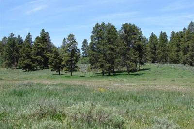 Halter Trail