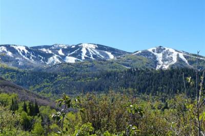 420 Boulder Ridge