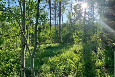 22536 Cheyenne Trail