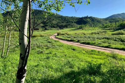 32515 Ute Trail
