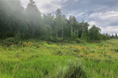32519 Ute Trail