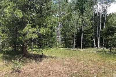 33570 Surrey Trail