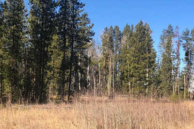 20945 Cayuse Trail