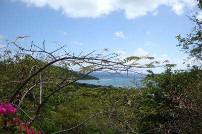O Fish Bay 1