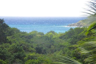U Fish Bay 1