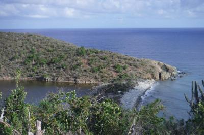4 Hansen Bay 1