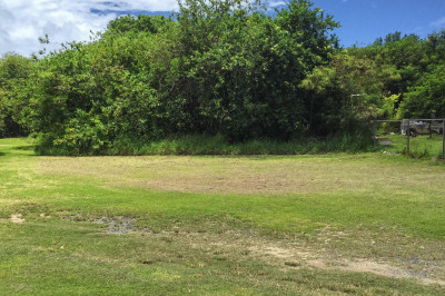 322 Peter's Rest Qu 1