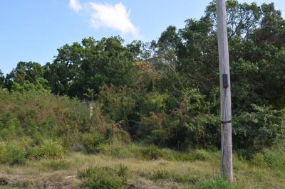 272 Hermon Hill Co 1