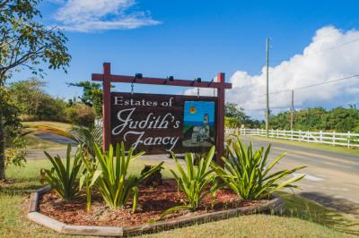 147 Judith's Fancy Qu 1
