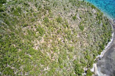 8-1-a Saba Bay 1