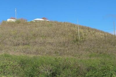 106 Green Cay Ea 1