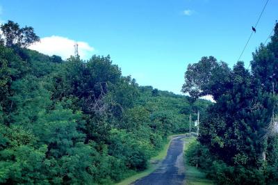 51 Beeston Hill Co 1