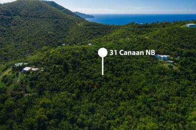 Canaan Nb 1