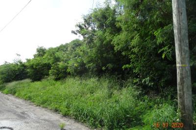 224 Clifton Hill Ki 1