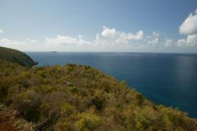 4-34 Botany Bay We 1