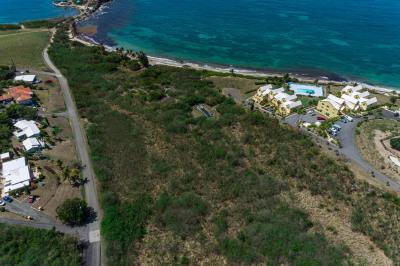 Rem 21etal Green Cay Ea 1
