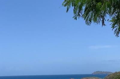 Frenchman Bay Fb 1