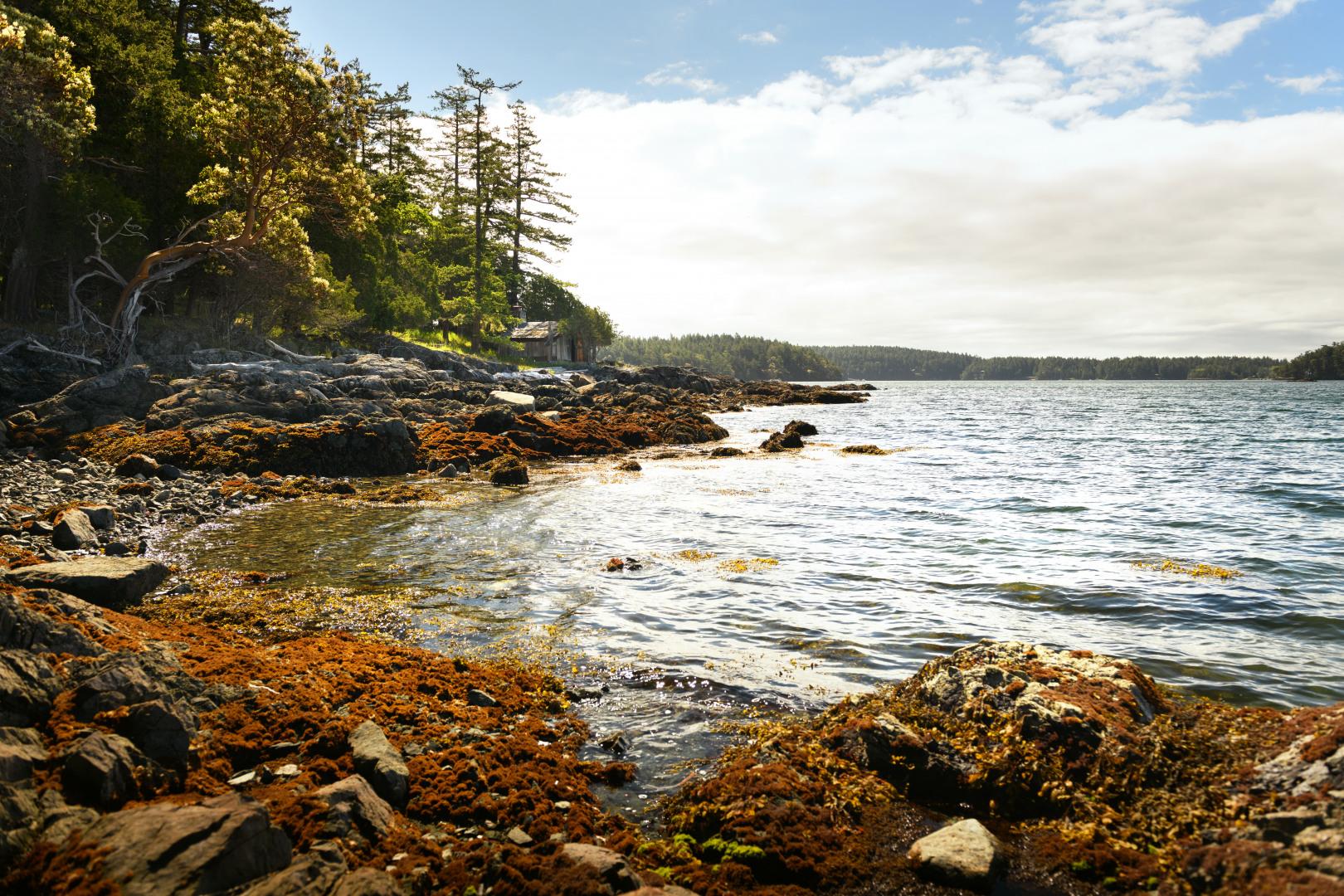 0 xxx Reef Island Photo 24