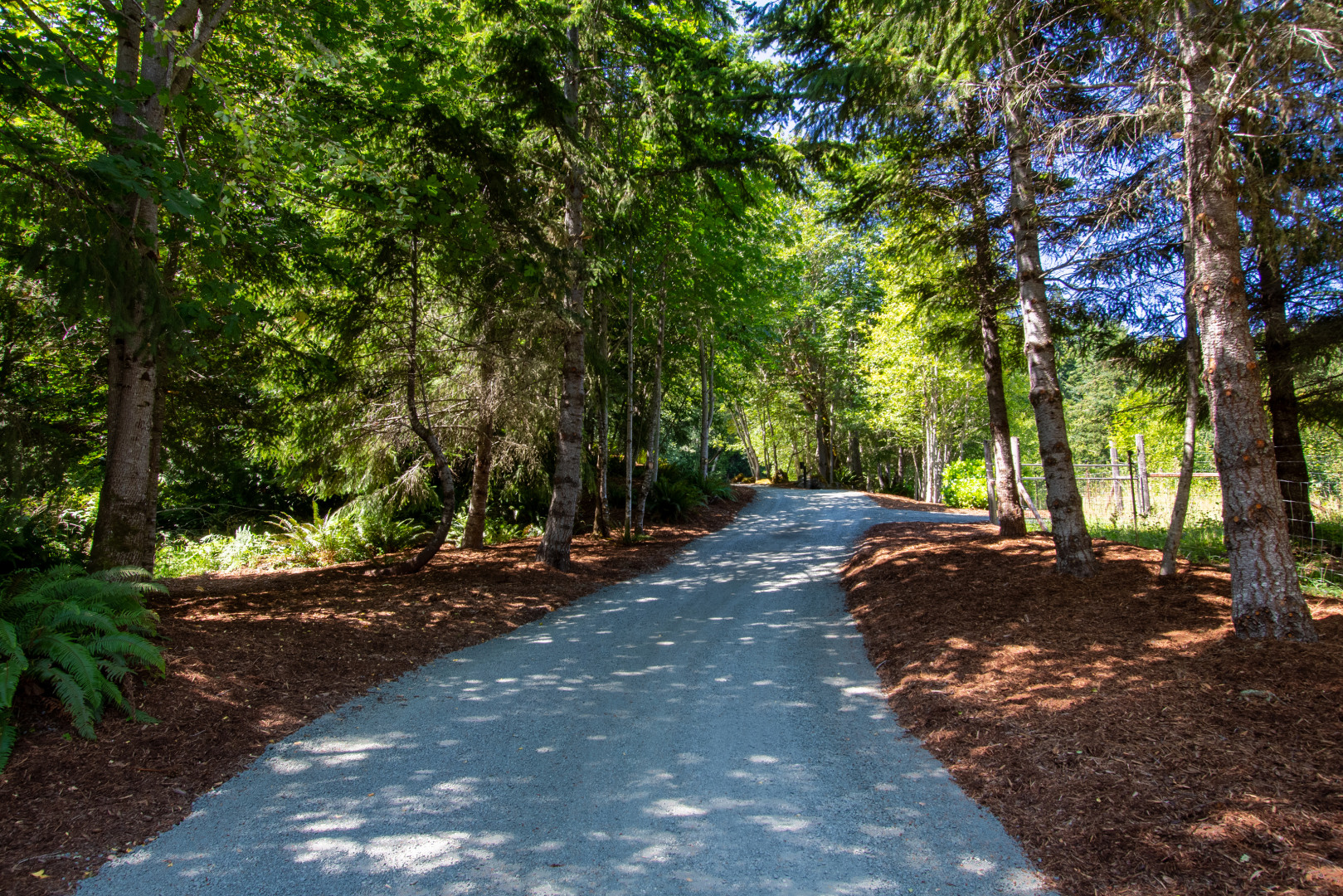 7825 S Mount Angeles Road Photo 45