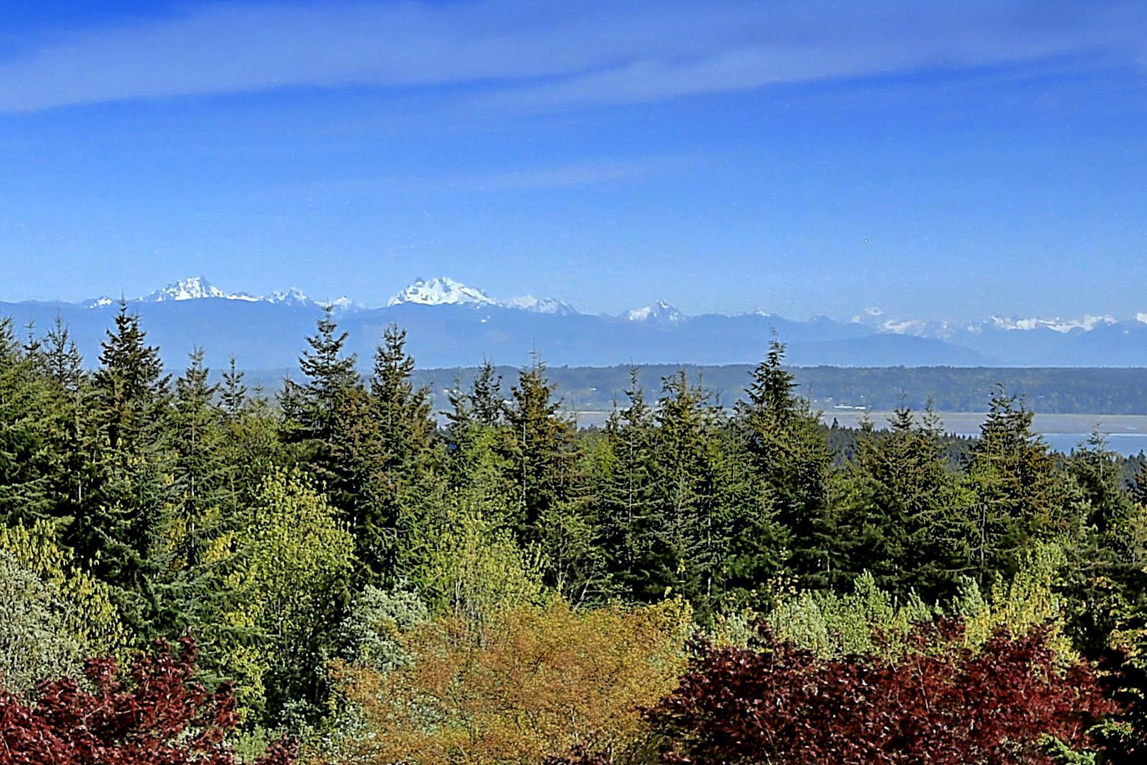 48 Glacier Peak Dr Photo 15