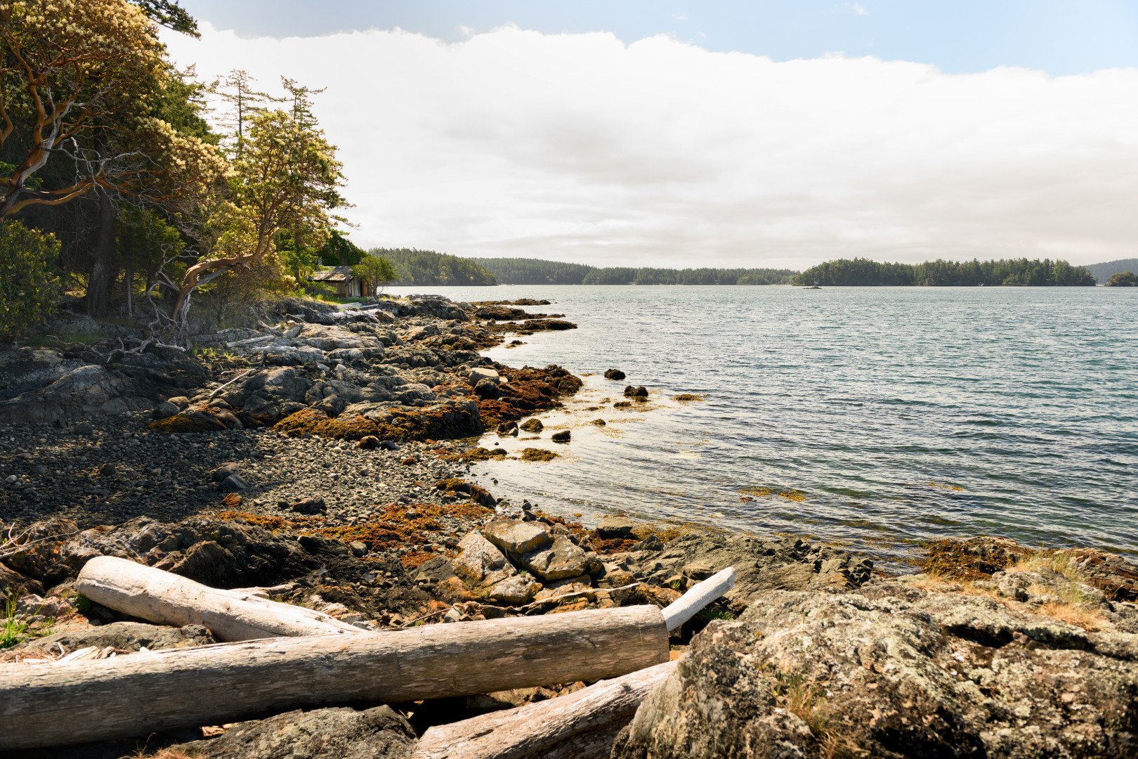 0 xxx Reef Island Photo 25