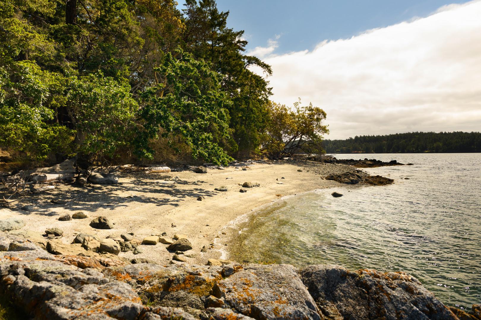 0 xxx Reef Island Photo 5