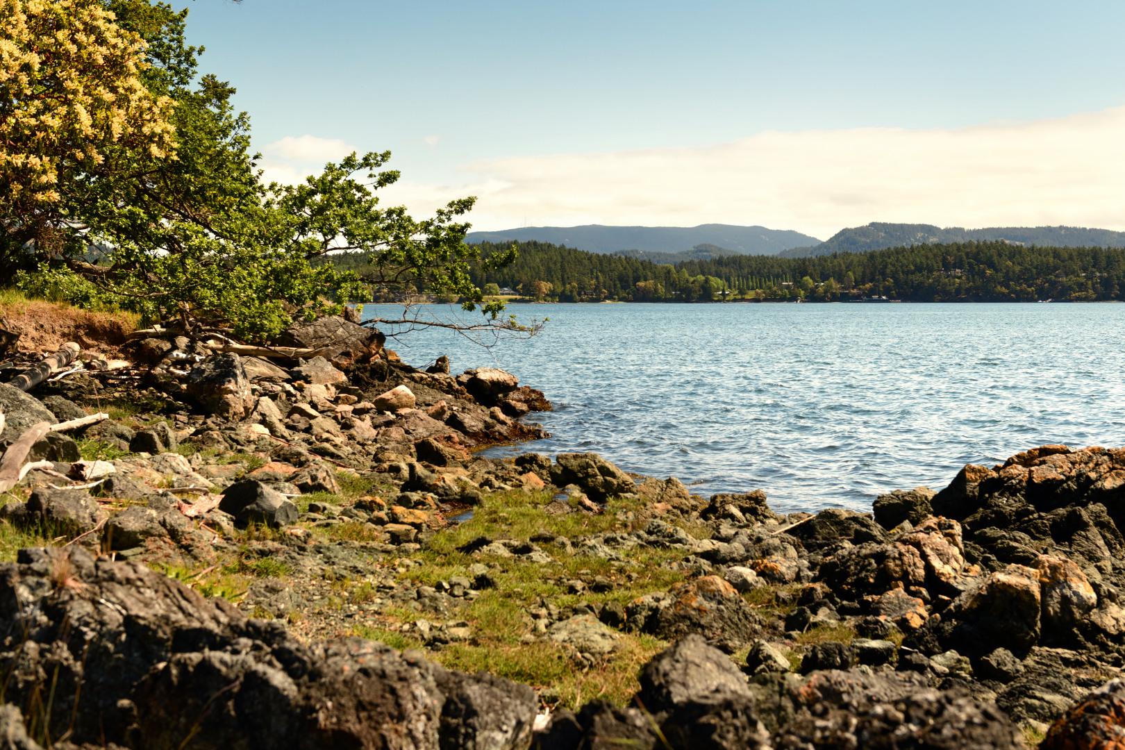 0 xxx Reef Island Photo 20