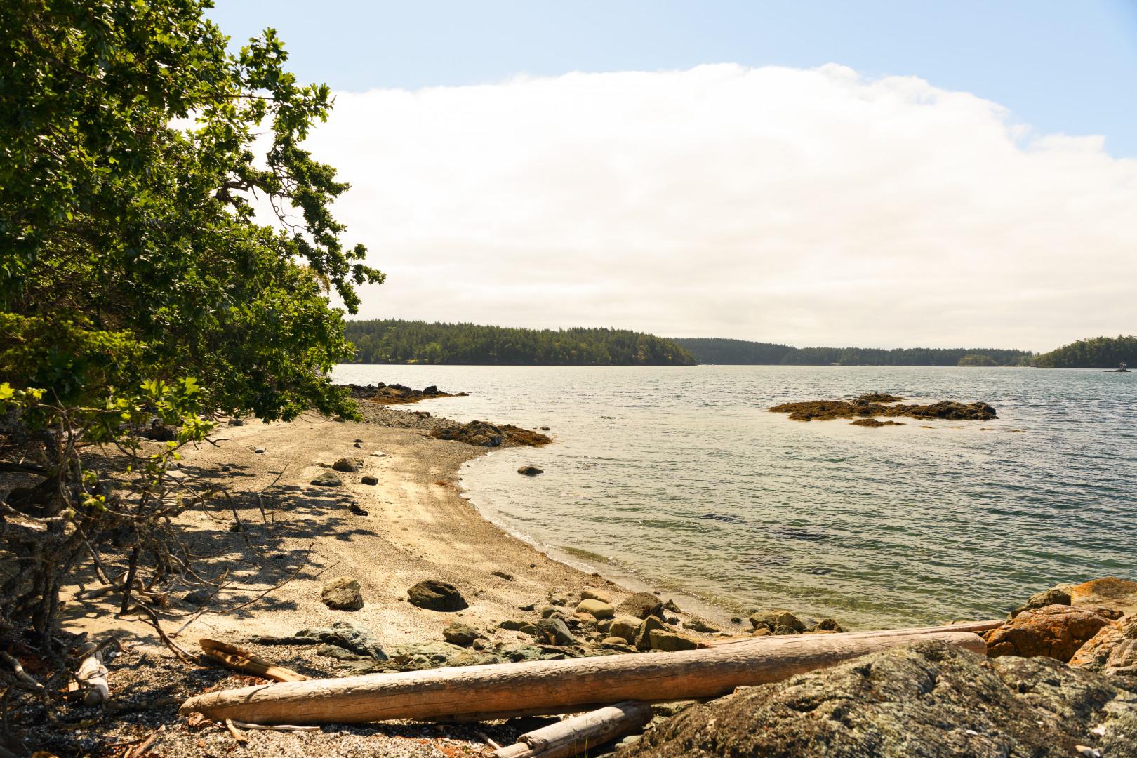 0 xxx Reef Island Photo 22