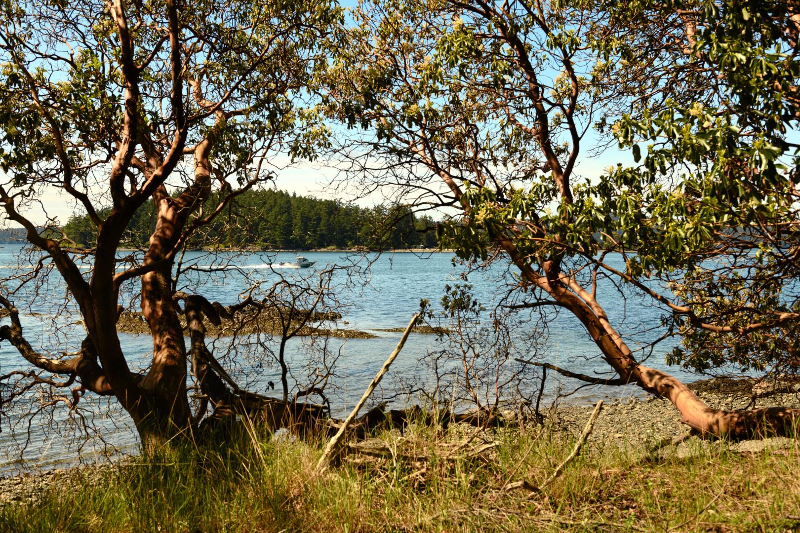 0 xxx Reef Island Photo 19