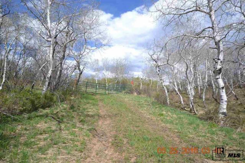 23655 Silverado Photo
